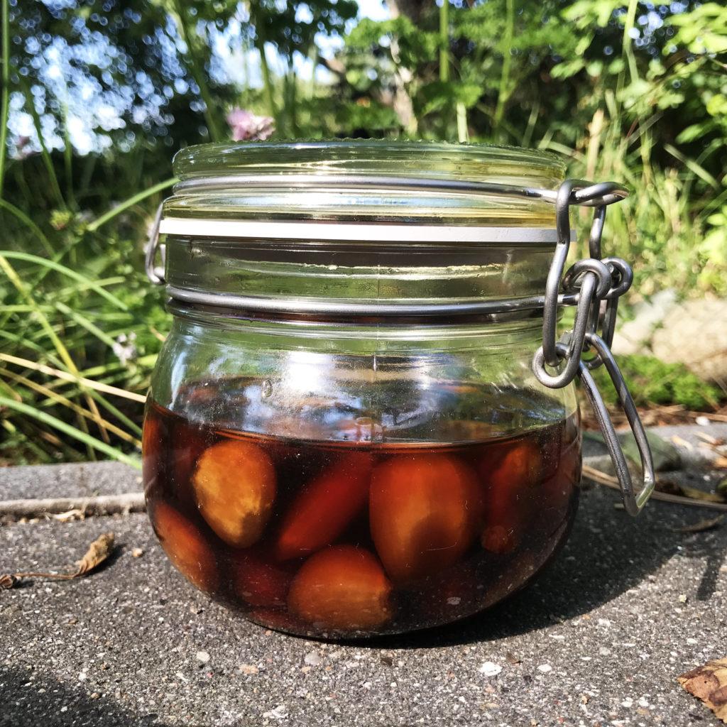 Knoblauch in Waldhonig fermentiert