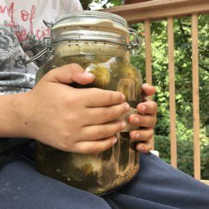 Kalle hält ein Glas fermentierte saure Gurken