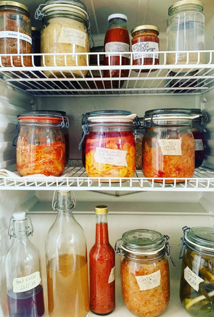 viele Fermente in einem Kühlschrank